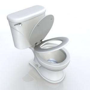 3D Toilette halb offen Draufsicht